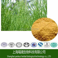 Natural Health Remedies/Horsetail Grass Extract/Best Herbal Medicine/Organic Silica