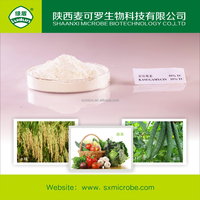 Biological fungicide kasugamycin 70% TC