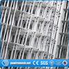 Factory professional hot sale high quality galvanized welded wire mesh / welded wire mesh fence /306stainless steel wire mesh