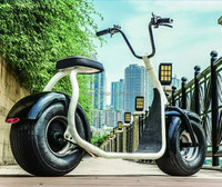 City scooter electric motorcycle Tailg Cheap small electric scooter moped 800W electric motorcycle with pedals assistant