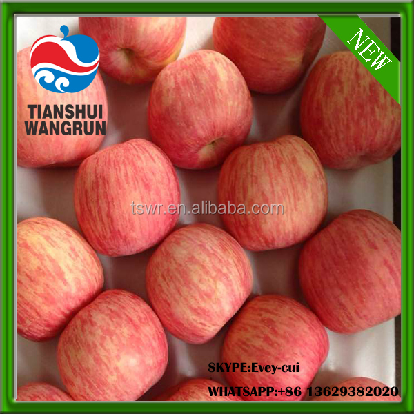 chinese Fuji apples china red fuji apples stripe fuji apple price