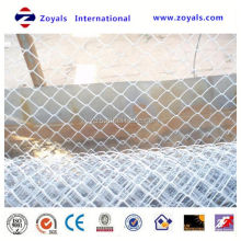 competitive price hexagonal galvanized chain link wire mesh (ISO Factory & Exporter)