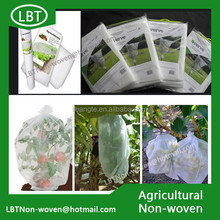 Plant Cover eco-friendly non-woven fabric for crop production/pp spunbond nonwoven fabric agriculture cover fruit bag