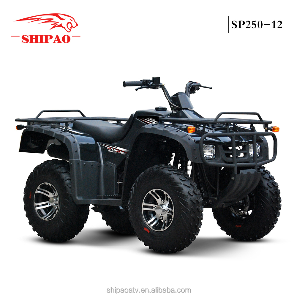 SP250-12 China made atv air cooled engine CST tyre