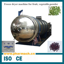 Hot sell Vacuum fruit and vegetable freeze drying machine