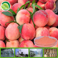 100% organic peach fruit powder