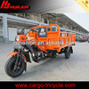 three wheel motorbike/motorized tricycles/adult tricycles with motor