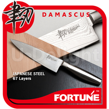 Japanese VG-10 damascus stainless steel Chef kitchen knife