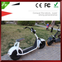 Zhejiang 2 Wheel Citycoco Electric Scooter