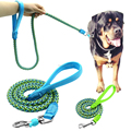 Newest Hot Sale Strong Durable Nylon Dog Leash