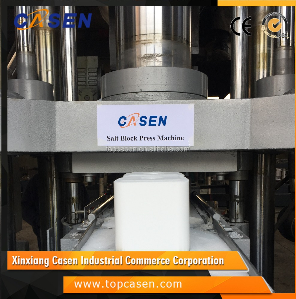 CE High quality hydraulic mineral salt block press machine for cattle 2kg 3kg 5kg 10kg