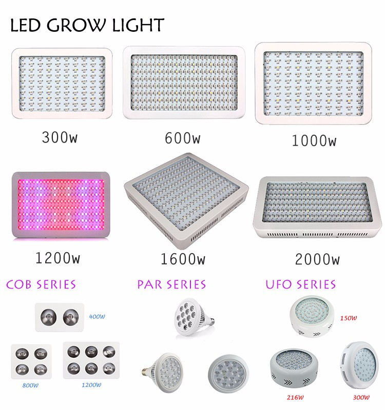 Top-Standard-Quality plant grow led