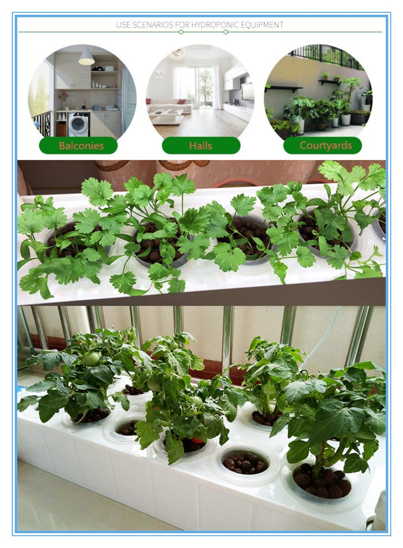 Factory Competitive price  NFT hydroponics system indoor plant grow box