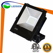 Super long lifespan Brigelux led spotlight led warehouse / street light led fixture