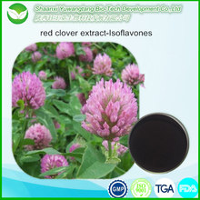 Natural herbal red clover extract