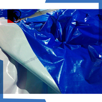 135gsm blue white pe plastic canvas tarpaulin sheet cover,plastic sheet greenhouse cover
