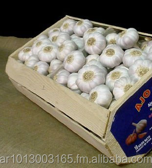 Garlic From Argentina | Reserve New Crop 2014 Nov