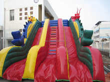 Amusement Dragon Slide inflatable slip and slide for sale