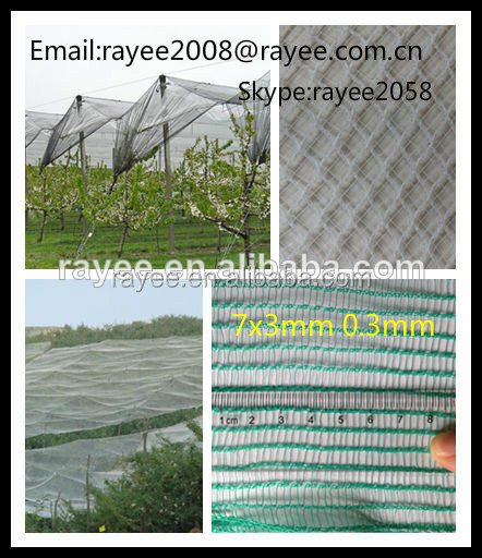 Platation/ Fruit Tree Anti Hail Net made in china , antigranizo granizo,tela antigranizo,hagelschutz fur pflanzen