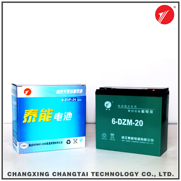 Flexible rechargeable sealed lead acid battery for scooter