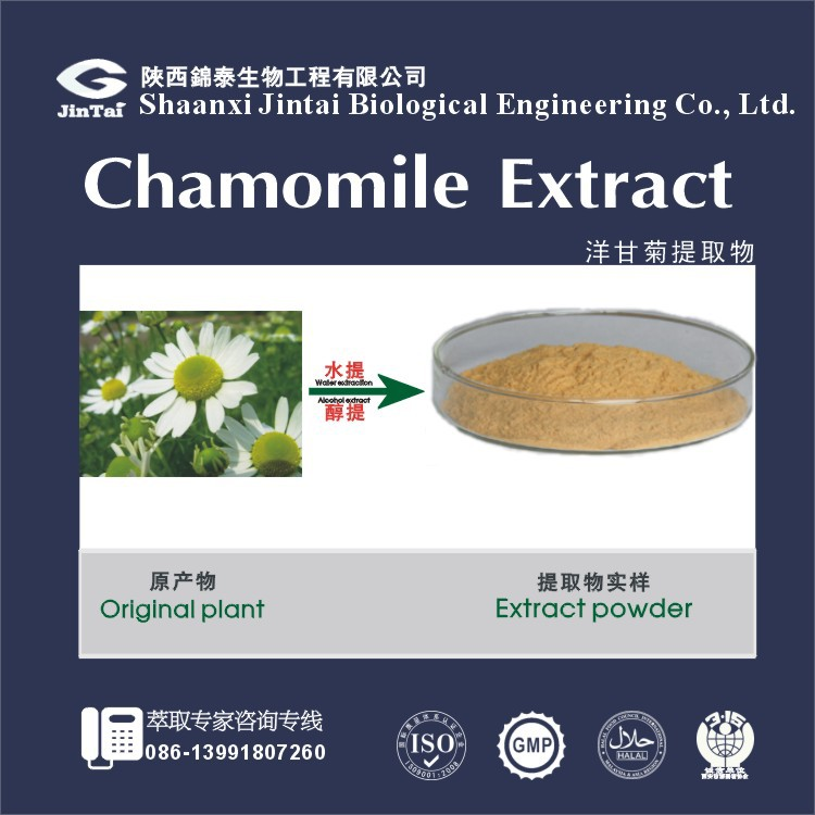 high quality natural chamomile extract powder