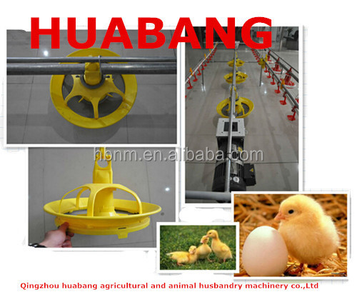 Best price duck/poultry Feeding line system