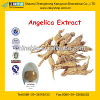 100%Natural High Quality Angelica Root Extract from GMP Factory