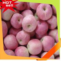 Professional Fruit Supplier mix fruit slimming 2014