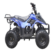 Cheap 110cc chinese atv price