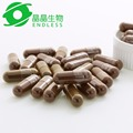 anti-fatigue ganoderma lucidum spore powder capsule