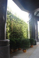 Tall artificial bamboo fence green plastic bamboo plants