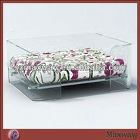 Large Bespoke Lucite Acrylic Pet Dog Bed