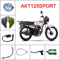 HOT SALE motor spare parts wholesale for akt125 sport