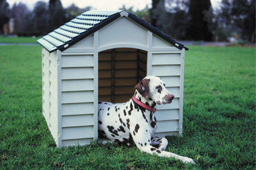Dog Kennel 50-701