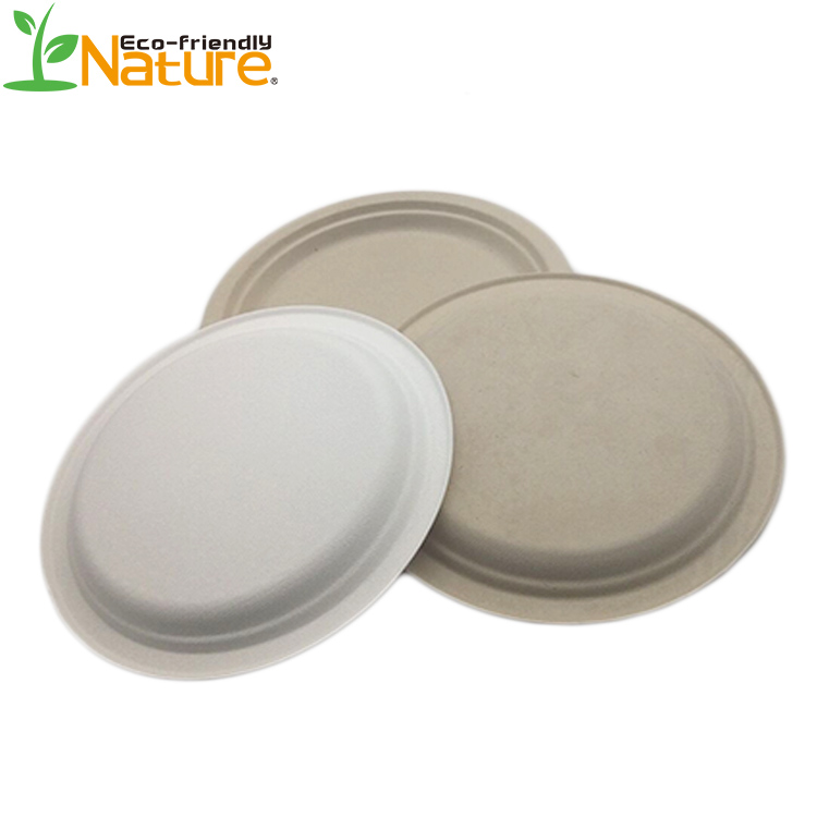 Compostable 9Inch Biodegradable Paper Plates Disposable Food Tableware
