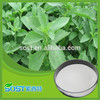 2016 factory supply wholesale bulk pure stevia extract