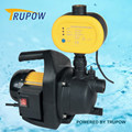 Professional Garden Pumps With Electric Swith And Single-stage