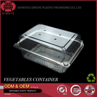 Transparent Plastic PET Food Container Vented Storage Box for Vegetable,Supermaket Frozen Food