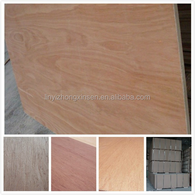 plywood/ rotary cut veneer plywood