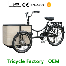 mini 3 wheel tricycle motor cargo bike bakfiets for sale