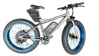 leili factory high performance electric fat tire bike conversion kit price