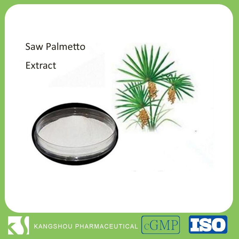 High Quality 25% Saw Palmetto Extract