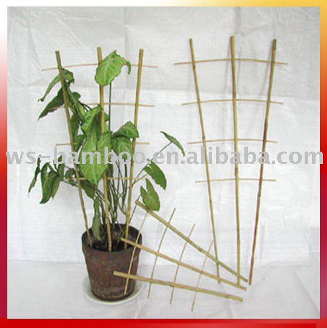 Using support plant and flower little bamboo hoop