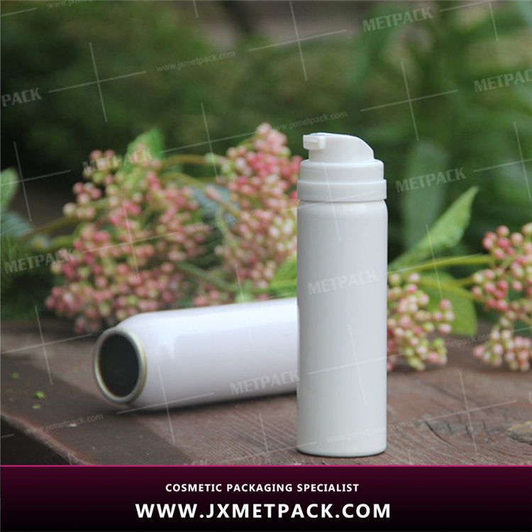 Insect aerosol spray Insecticide mosquito repellent mosquito spray