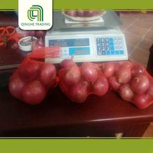 Hot selling onion importers in singapore for sale