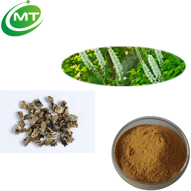 Free sample Chinese supply Boosting male virility Black Cohosh Extract