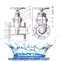 din gate valve drawing