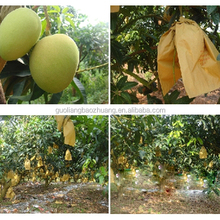 Water Proof Anti Insect Fruit Wrapping Paper Bag Protection Apple Mango Grape Growing Paper Bag