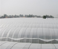 TIANSU Hot Sell Antidripping Agricultural Greenhouse