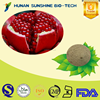 Alibaba China Anti-cancer Pomegranate Hull Extract 40% Ellagic acid